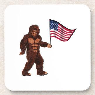 American Pride Coaster