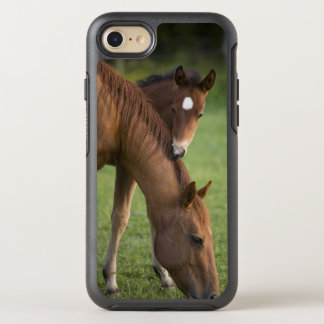 American Quarter horse mare and colt in field at OtterBox Symmetry iPhone 7 Case