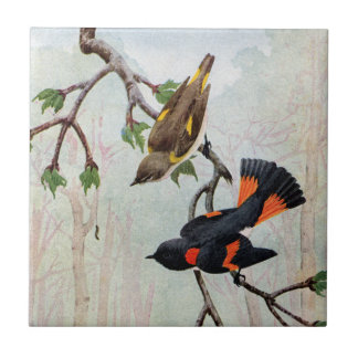 American Redstarts Eye Caterpillar Tile