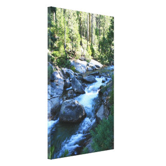 """American River"" Canvas Print"