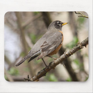 American Robin Mouse Pad