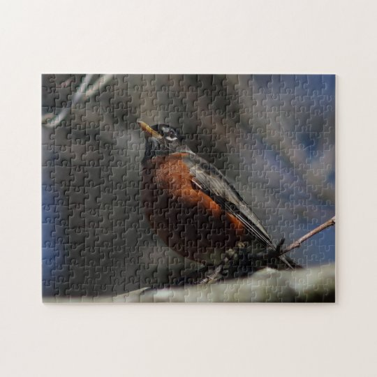 American Robin, Photo Puzzle. Jigsaw Puzzle