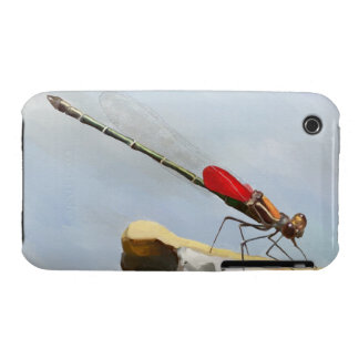 American Rubyspot Damselfly or Dragonfly Insect iPhone 3 Cases