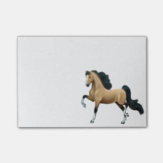 American Saddlebred Gaited Horse Notes