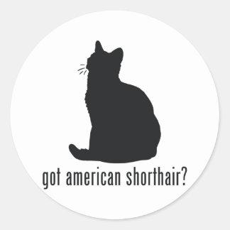 American Shorthair Cat Classic Round Sticker