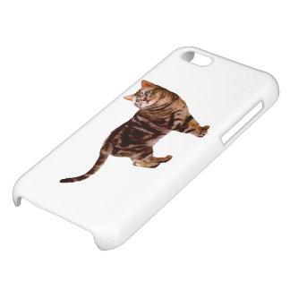 American Shorthair iPhone 5C Cases