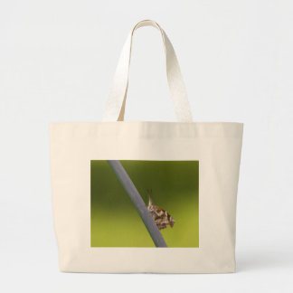 American Snout Butterfly on Green Background Tote Bag