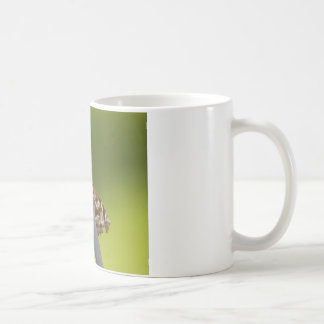 American Snout Butterfly on Green Background Classic White Coffee Mug