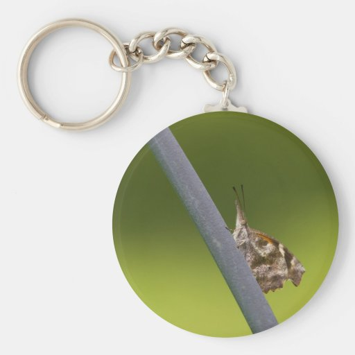 American Snout Butterfly on Green Background Key Chain