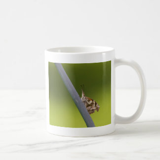 American Snout Butterfly on Green Background Coffee Mugs