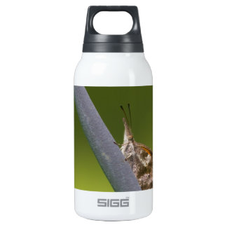 American Snout Butterfly on Green Background SIGG Thermo 0.3L Insulated Bottle