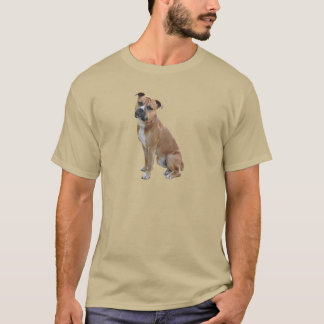 American Staffordshire Terrier (A) - Brown-white T-Shirt