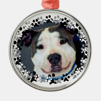 American Staffordshire Terrier-Am Staff Photo Silver-Colored Round Ornament