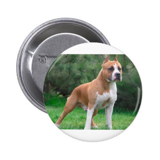 American Staffordshire Terrier Dog 2 Inch Round Button