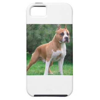 American Staffordshire Terrier Dog Case For The iPhone 5