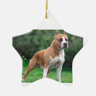American Staffordshire Terrier Dog Ceramic Star Ornament