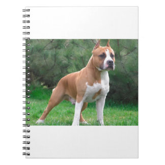 American Staffordshire Terrier Dog Notebook