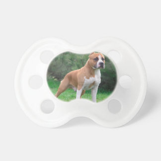 American Staffordshire Terrier Dog Pacifier