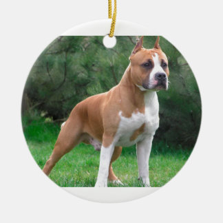 American Staffordshire Terrier Dog Round Ceramic Ornament