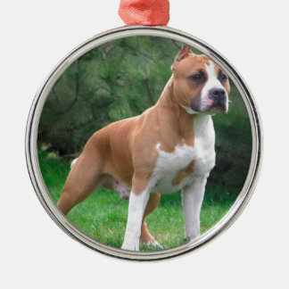 American Staffordshire Terrier Dog Silver-Colored Round Ornament