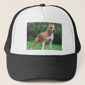 American Staffordshire Terrier Dog Trucker Hat