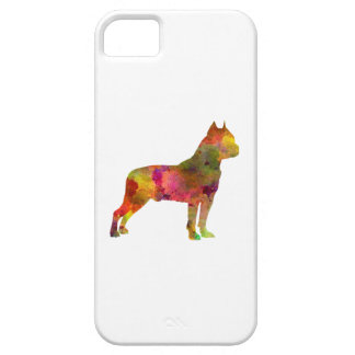 American Staffordshire Terrier in watercolor 2 iPhone 5 Covers