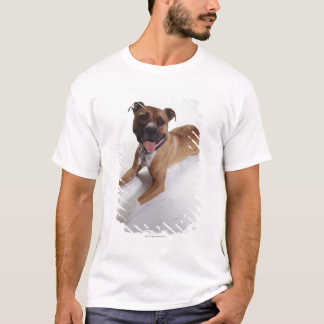 American Staffordshire Terrier lying down, T-Shirt