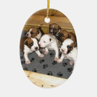 American Staffordshire Terrier Puppies Dog Ceramic Oval Ornament