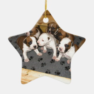 American Staffordshire Terrier Puppies Dog Ceramic Star Ornament