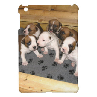 American Staffordshire Terrier Puppies Dog iPad Mini Case