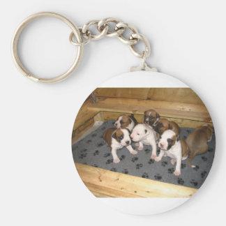 American Staffordshire Terrier Puppies Dog Keychain