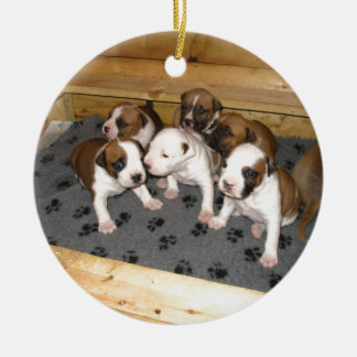 American Staffordshire Terrier Puppies Dog Round Ceramic Ornament