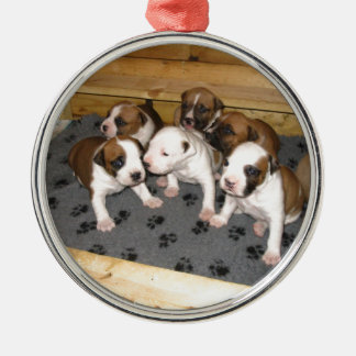 American Staffordshire Terrier Puppies Dog Silver-Colored Round Ornament