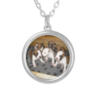 American Staffordshire Terrier Puppies Dog Silver Plated Necklace