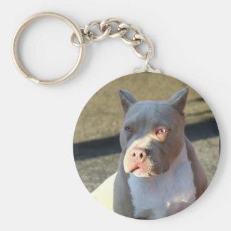 American Staffordshire Terrier puppy keychain