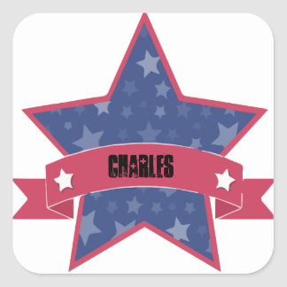 AMERICAN STAR SQUARE STICKER