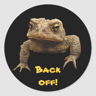 American Toad Classic Round Sticker