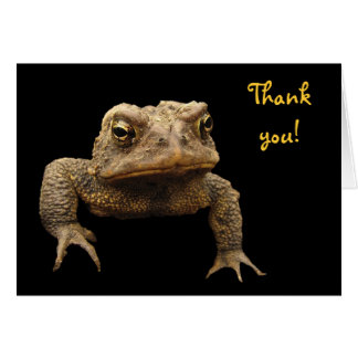 American Toad Thank You Card