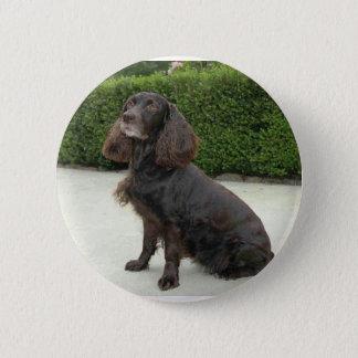 American Water Spaniel Dog 2 Inch Round Button