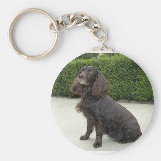 American Water Spaniel Dog Keychain