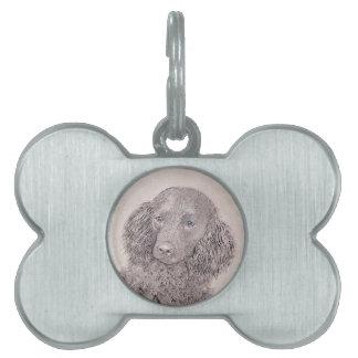 American Water Spaniel Painting - Original Dog Art Pet Name Tag