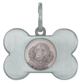 American Water Spaniel Pet ID Tags