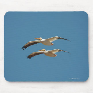 American White Pelican 2 Mousepad