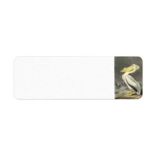 American White Pelican by Audubon Return Address Label