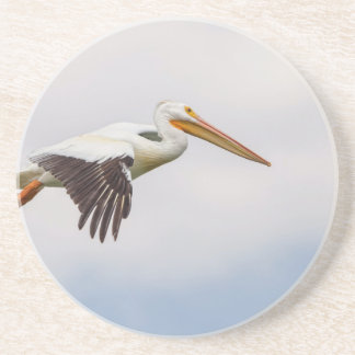 American White Pelican Cruising Drink Coasters
