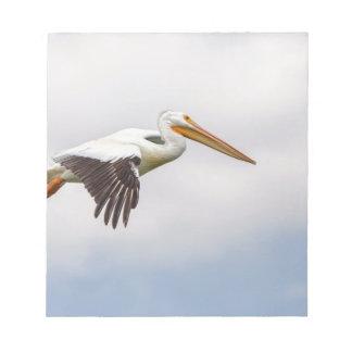 American White Pelican Cruising Notepad