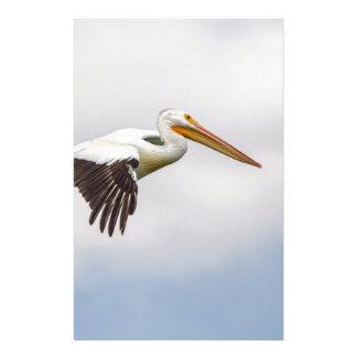 American White Pelican Cruising Stationery