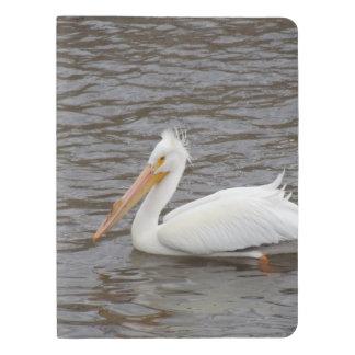 American White Pelican In Breeding Condition