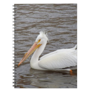 American White Pelican In Breeding Condition Spiral Notebook