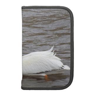 American White Pelican In Breeding Condition Folio Planner